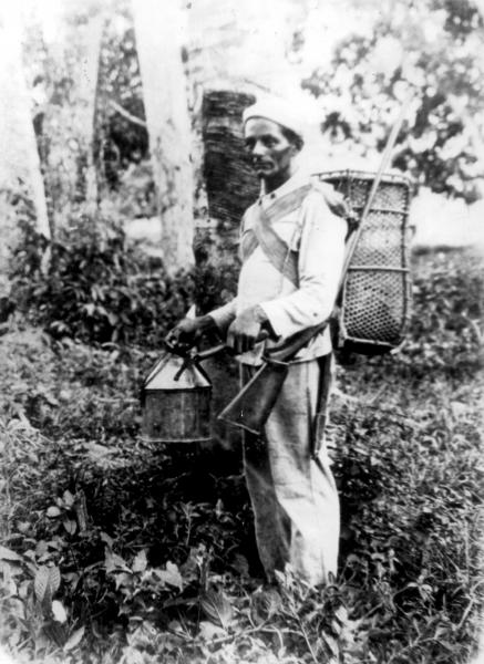 Rubber Tappers Drawing Begins in 1910 With The