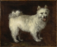Thomas Gainsborough Spitz Dog, ca. 1765 Oil on canvas, 24 x 29 1/2 in. Yale Center for British Art, Paul Mellon Collection