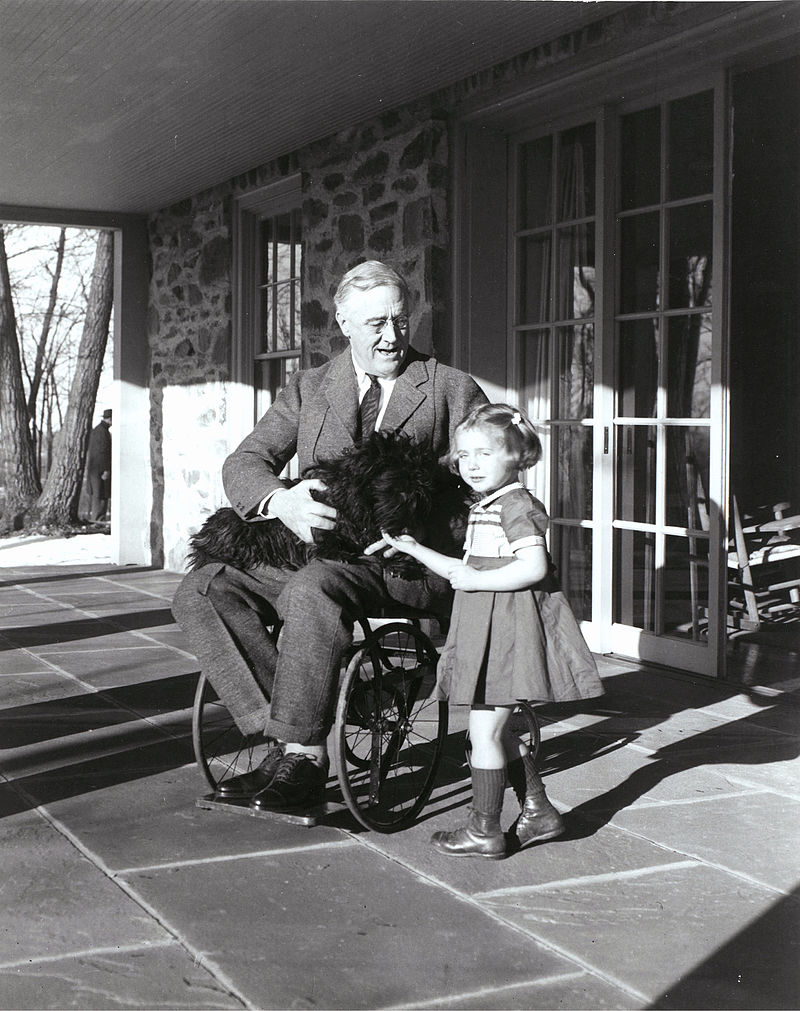 Photograph of FDR in a wheelchair, with Ruthie Bie and Fala, taken by his cousin Margaret Suckley, February 1941. From the FDR Presidential Library and Museum.