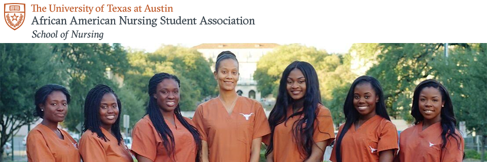 African American Nursing Students Association