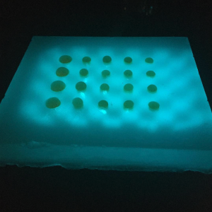Gel tissue phantoms made in a research lab