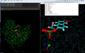 screenshot of chemical reaction simluation in computer environment