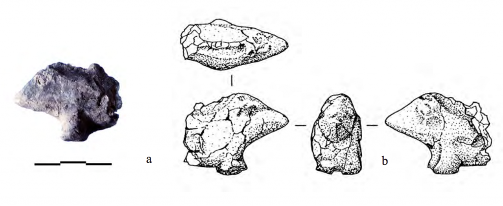 Photo of a wild boar figure with 4 drawings from different angles.