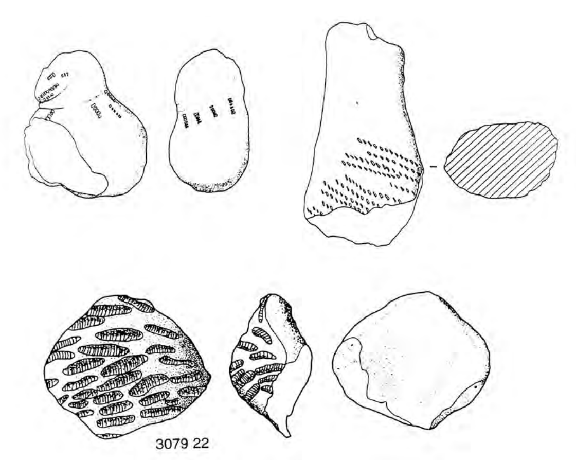 drawings of purposefully hand modeled fragments from different angles.