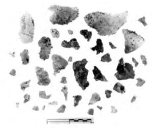 drawing of skull fragments