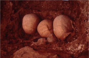 the tops of three skulls at excavation site.