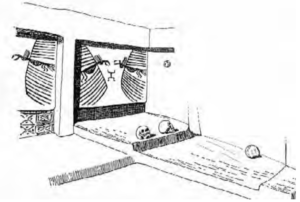 drawing of a room where skulls are on display.