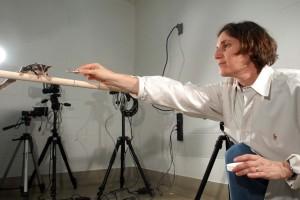 Shapiro, Liza 2008 in lab with sugar gliders