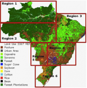 changing area under forest and its impact on environment information Human impact on the natural environment this has significant negative impacts on its survival the conditions under adaption to the changing environment.