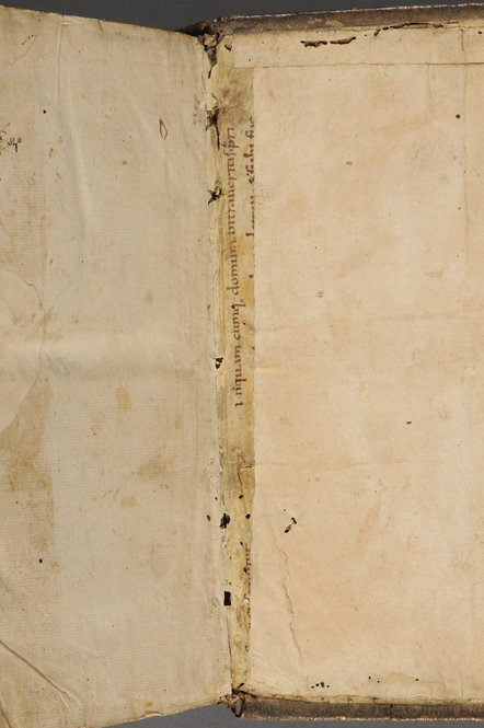 Fragment of a 9th-century Latin Bible. John 10:5 used as spine-lining. Manuscript on parchment. Photo by Pete Smith.