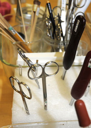 Tools of the trade in the conservation lab. Photo by Anthony Maddaloni.