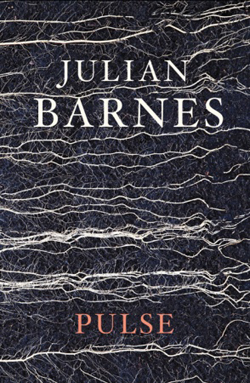 Cover of 'Pulse' by Julian Barnes