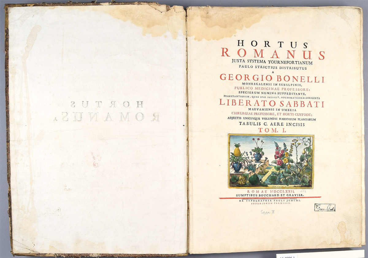 Hortus-vol-1-before