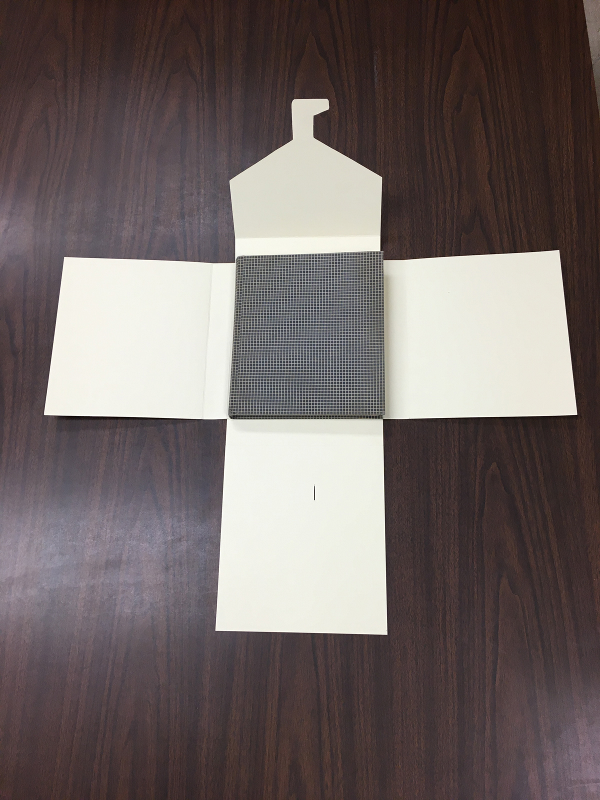 A Guy Davenport journal set in an open four-flap tux box.