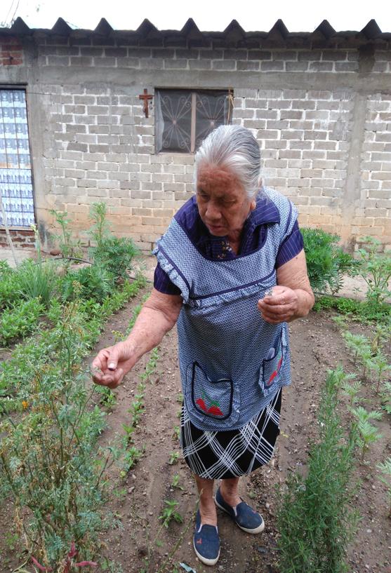 midwife in Oaxaca