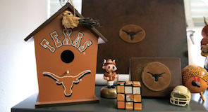 Texas birdhouse