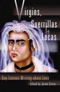 Image of Book Cover for Virgins, Guerillas, and Locas