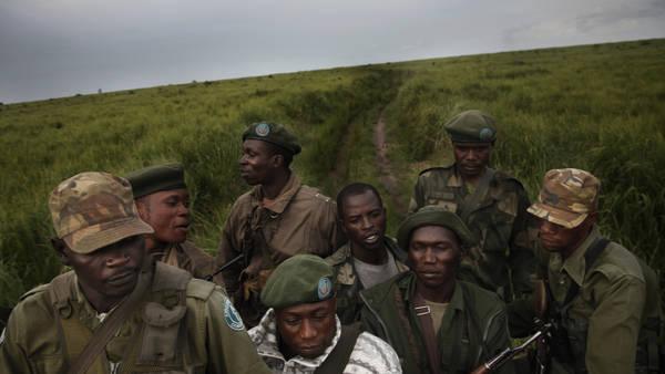 https://www.google.com/url?sa=i&rct=j&q=&esrc=s&source=images&cd=&cad=rja&uact=8&ved=0CAcQjRw&url=http%3A%2F%2Fwww.nytimes.com%2F2012%2F09%2F04%2Fworld%2Fafrica%2Fafricas-elephants-are-being-slaughtered-in-poaching-frenzy.html&ei=uEU1VfHSGoXWsAWQsIDoCg&bvm=bv.91071109,d.b2w&psig=AFQjCNGB5oGT_KzuEK-IKMTFWrdPVPuOkQ&ust=1429641004412531