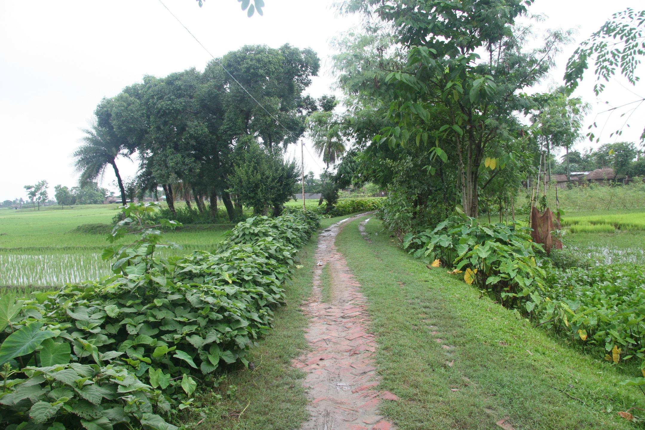 Road leading into Nimau Village
