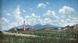 Puerto Rican landscape