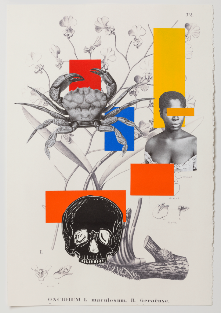 Digital print, collage, monotype and linoleum on paper
