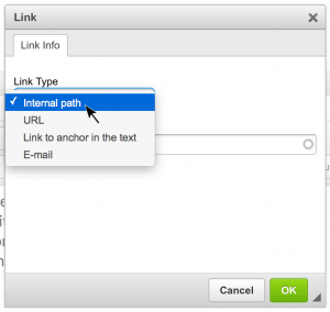Link button dialogue box with Link Type Dropdown expsed, showing Internal path, URL, Link to anchor in the text, and E-mail options.