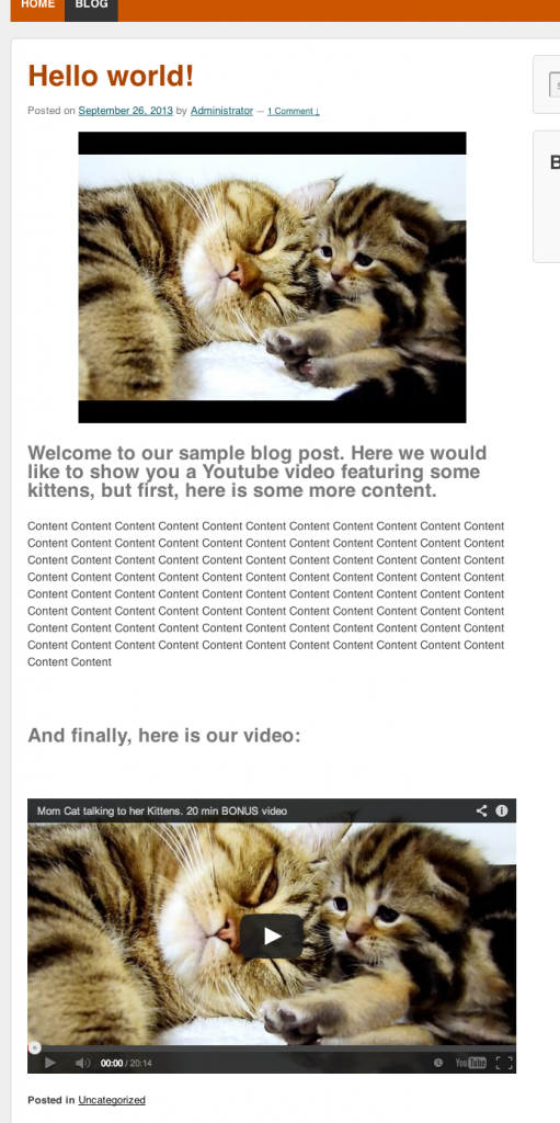 The Video Thumbnail Feature