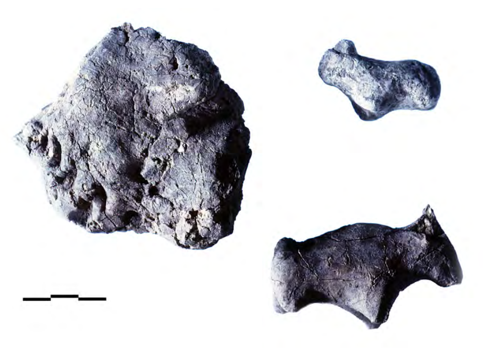 lump of coarse yellow clay bearing five curved incised markings and two figurines.