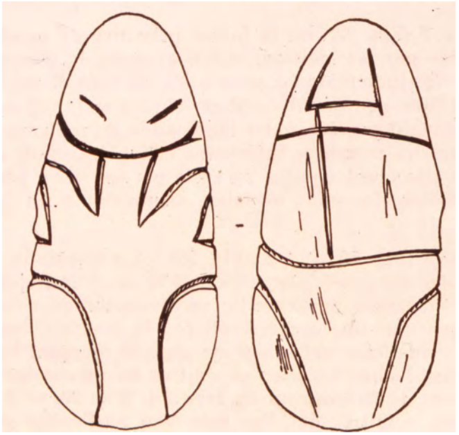 Drawing of two figurines from Sha'ar Hagolan showing a similar linear pattern.
