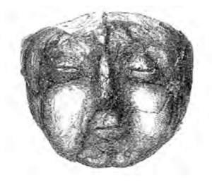Drawing of the face of Homo I