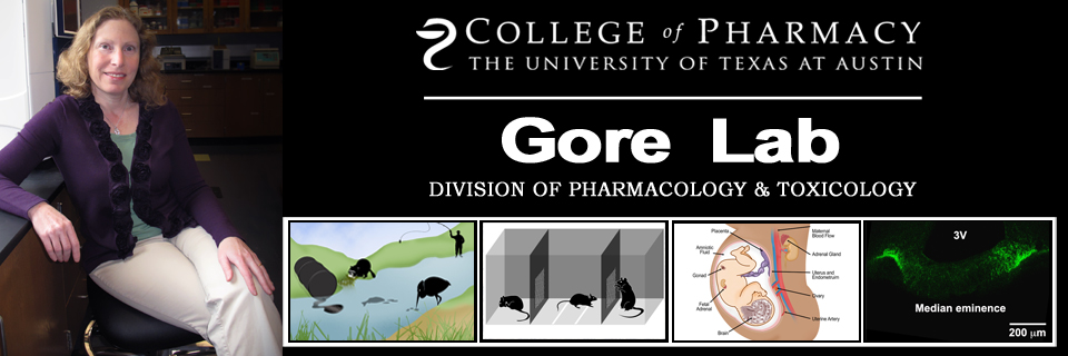 The Gore Lab