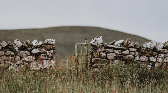 """Robert Frost's """"Mending Wall"""""""