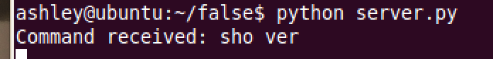"Server output after receiving ""sho ver"" command"