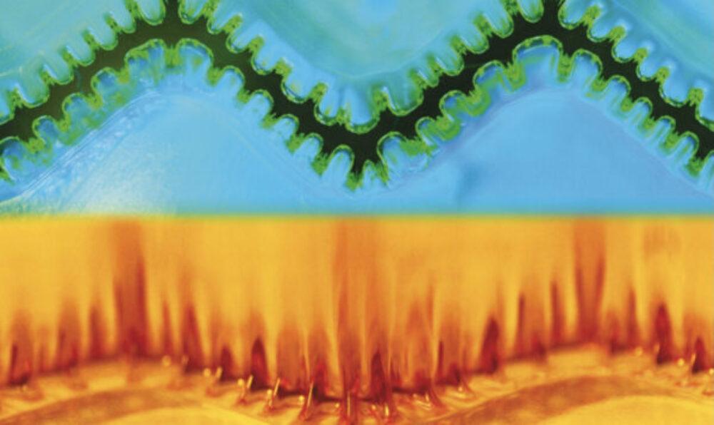 Mechanics of Smart and Tough Gels