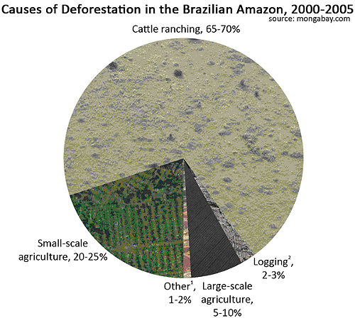 Reasons for deforestation (2000-2005)
