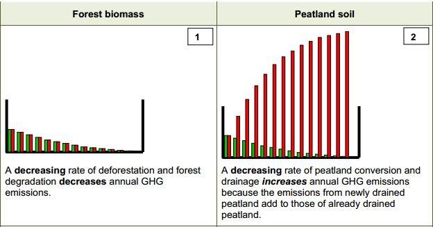 peat emissions
