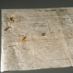 The lokta paper shows bits of bark and small twigs integrated into the fabric of the paper.