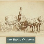 Tom Thumb's Carriage Tom Thumb was one of several smaller-than-average platform performers who worked for Barnum, but he was by far the most famous. Born as Charles Sratton and later renamed General Tom Thumb at the age of 4 by Barnum, Thumb drew huge audiences with his impersonations of famous figures such as Napoleon. While the carriage in this picture is labeled as belonging to the famous dwarf, it may actually have been one of the accessories for his brother-in-law, Commodore Nutt.