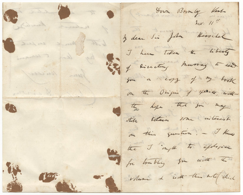 "Letter from Charles Darwin to Sir John Herschel, dated November 11, 1859. The letter was tucked inside a signed first edition of Darwin's ""Origin of Species."""