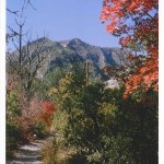 """""""McKittrick Canyon in Fall."""" Guadalupe Mountains National Park. 2006. Photo by Ken Grant."""