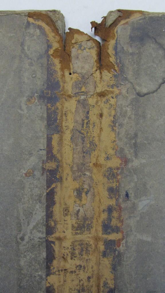 Détail de la couverture montrant la dégradation chimique et les parties lacunaires du cuir.