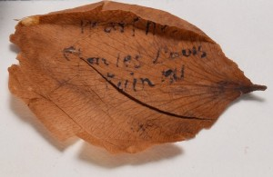 Flower petal restored to its open shape and inscription revealed.