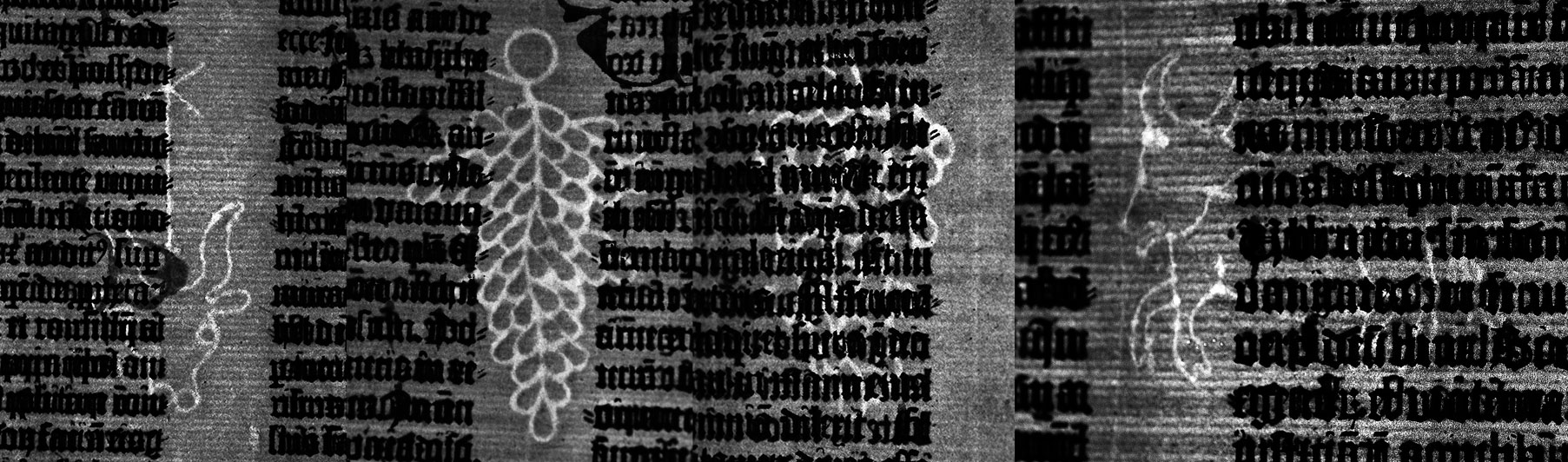 The four basic watermarks that appear in copies of the Gutenberg Bible. These photographs from the Ransom Center's copy were taken with the aid of transmitted light and have been edited to increase contrast.
