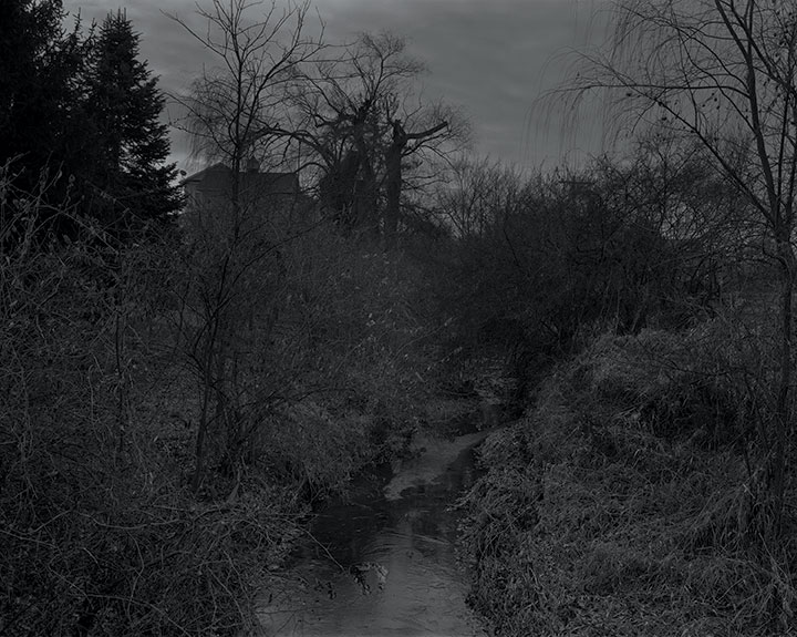 Portfolio of photographs acquired from DawoudBey's Night Coming Tenderly, Black