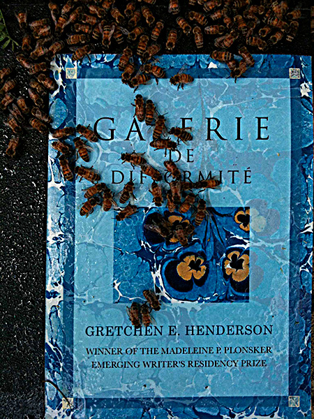 The cover of the printed book of Galerie de Difformité (Northwestern UP, 2011) reproduces flower-like marbled paper from the Newberry Library, here pollinated by bees at hives maintained by Jason Bennett, deformed/performed on grounds of Kenyon College's Brown Family Environmental Center (2011).