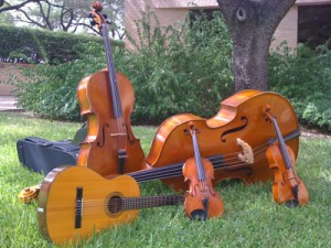 A bass, cello, guitar, viola, and violin together in the grass outside the Butler School of Music.