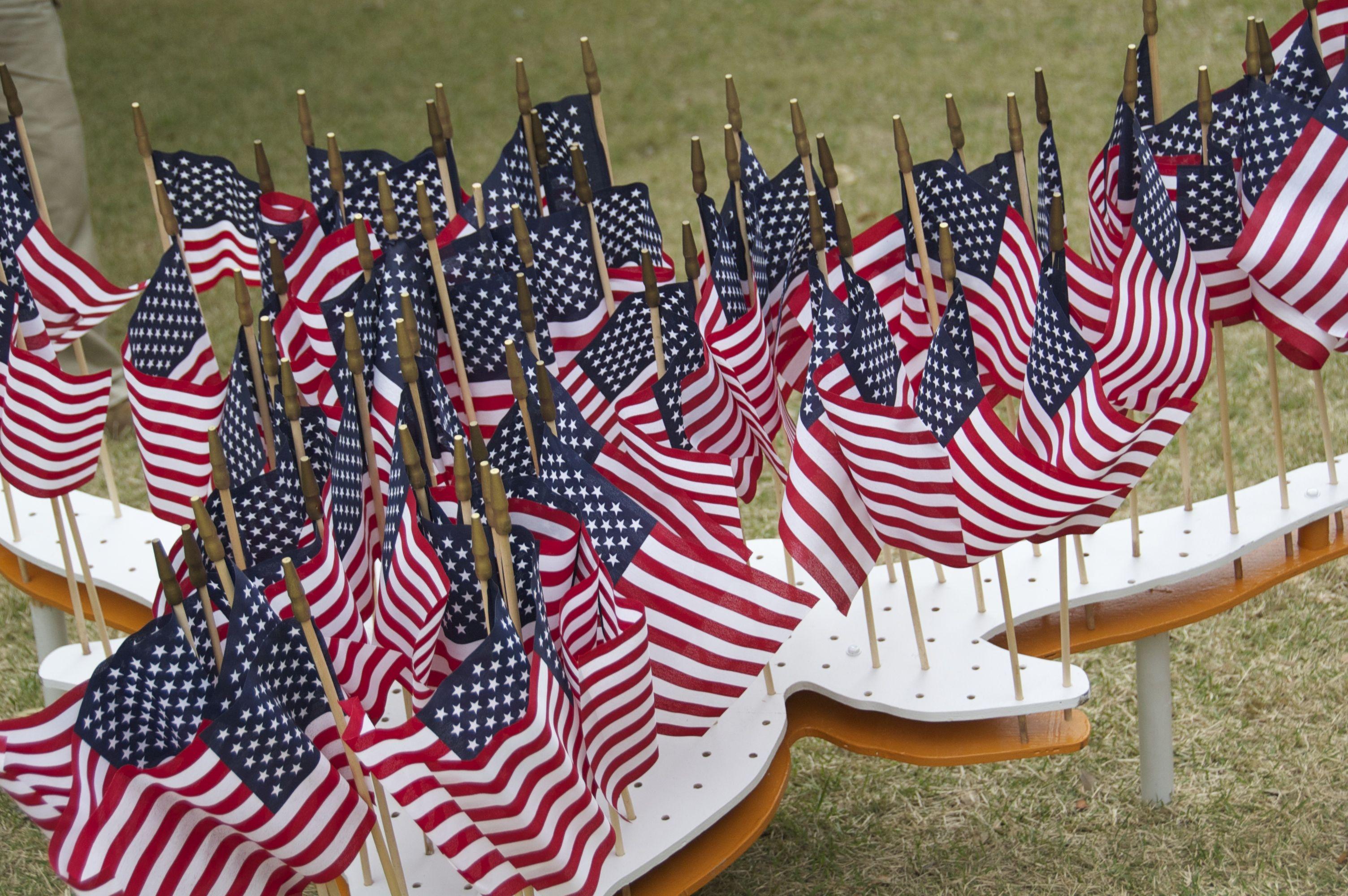 DoS-Veterans Day