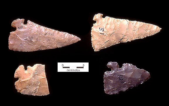 Small corner-tang artifacts with edge-wear and other signs of use. The tools likely were used for a variety of tasks. TARL Collections.