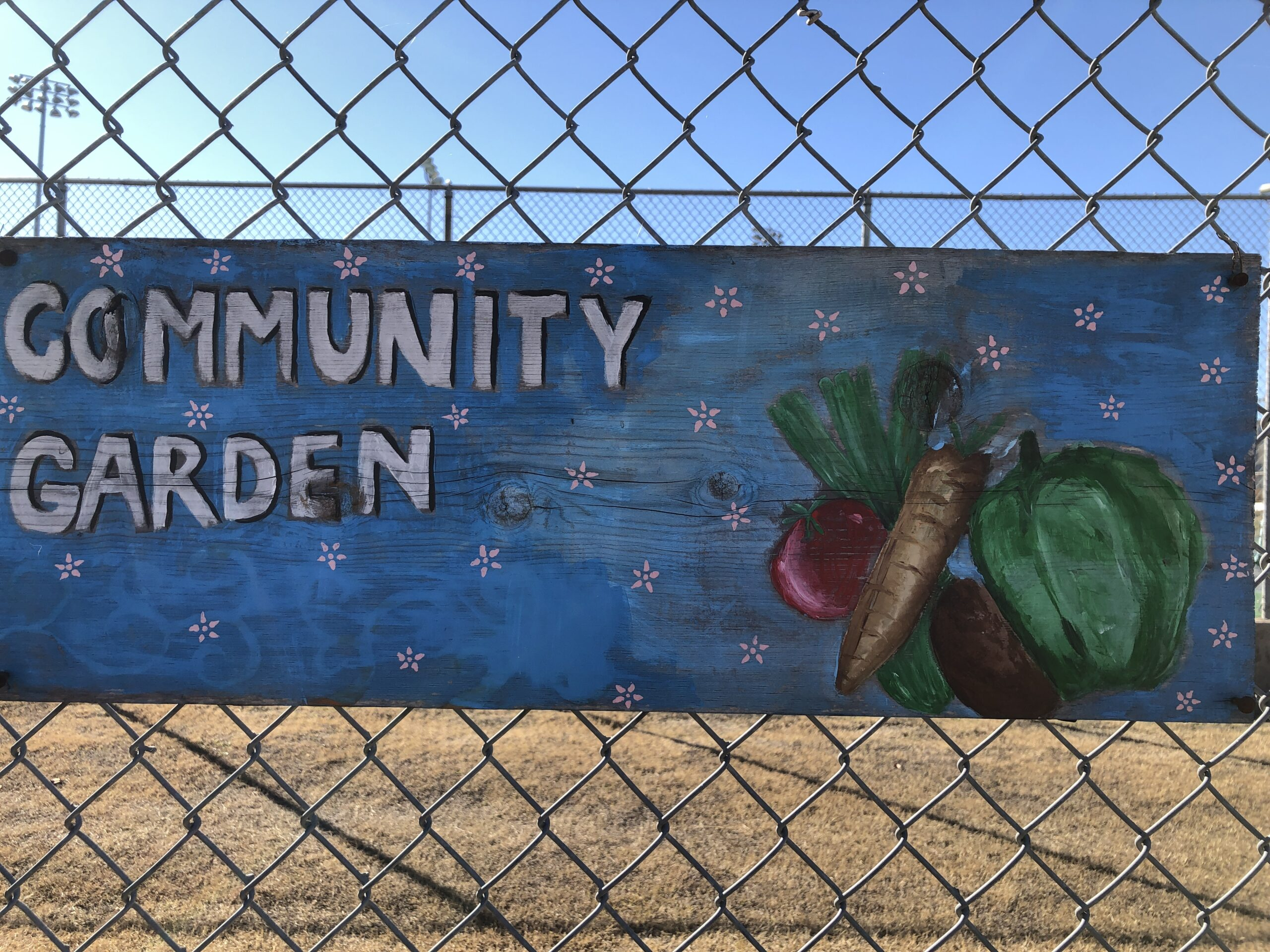 """a painted wooden sign that has """"Community Garden"""" written in white lettering and vegetables painted in the corner"""