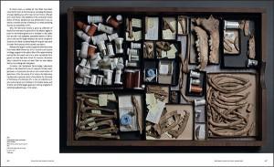 Drawer of bones from the Pleistocene period